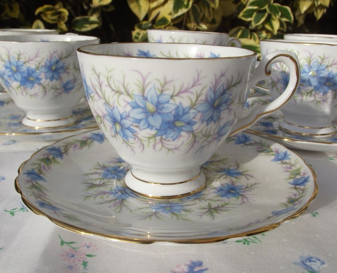 Tuscan 'Love in the Mist' Tiny Teacups