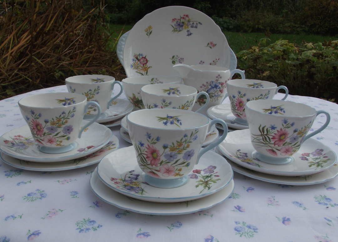 Shelley Wild Flowers Tea Set