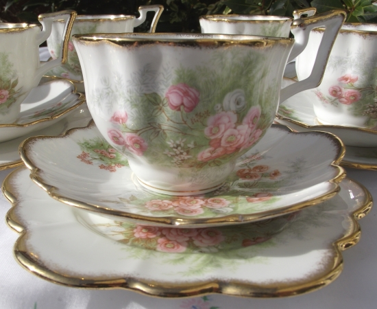 Salisbury 2969 Rosebud Tea Set